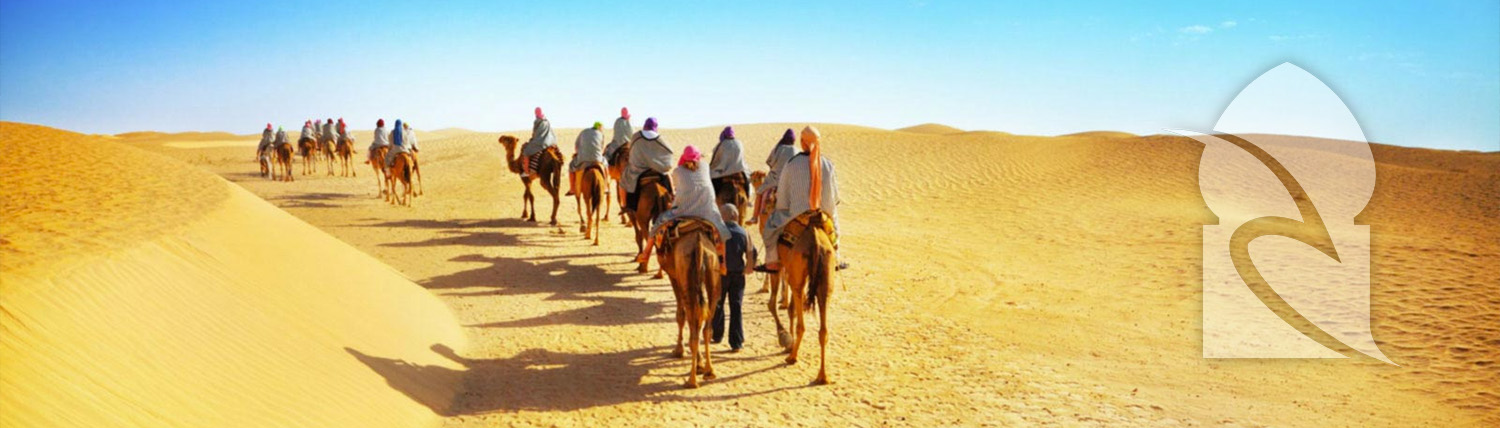 Camel and Horse Riding Agadir Morocco